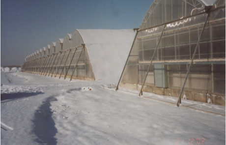 Greenhouses in arctic climate, China
